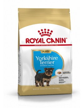 YORKSHIRE PUPPY ROYAL CANIN