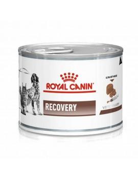 ROYAL CANIN Canine & Feline Recovery 195g