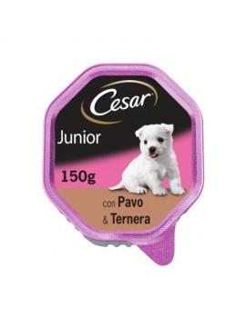 CESAR Tarrina Junior Pavo y Ternera 150g