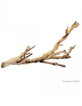 EXO TERRA FOREST BRANCH Peq. 30cm
