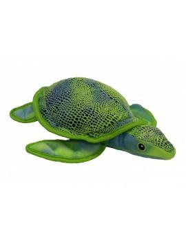 Tortuga Caribe 30cm