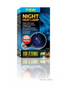 EXO TERRA NIGHT GLO LÁMPARA INCANDESCENTE 75 W