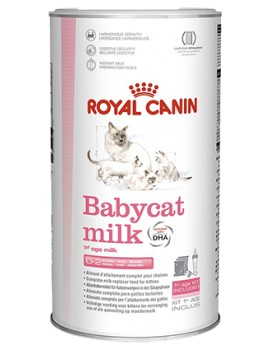 ROYAL CANIN Leche BabyCat Milk 300g