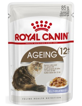 ROYAL CANIN Ageing +12 Jelly 85g