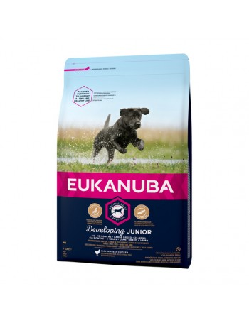 EUKANUBA Junior Large 3Kg