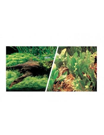 MARINA Fondo PLANTAS/PLANTAS 45cmX7.6m