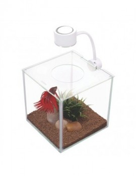 MARINA BETTA KIT CUBUS 3.4 LTS