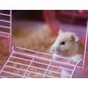 Jaulas hamsters y pequeños roedores